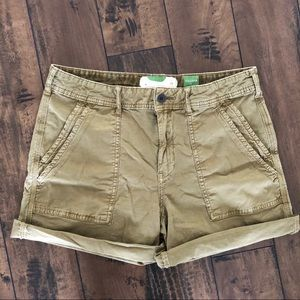 Anthropologie Wanderer army green cargo shorts